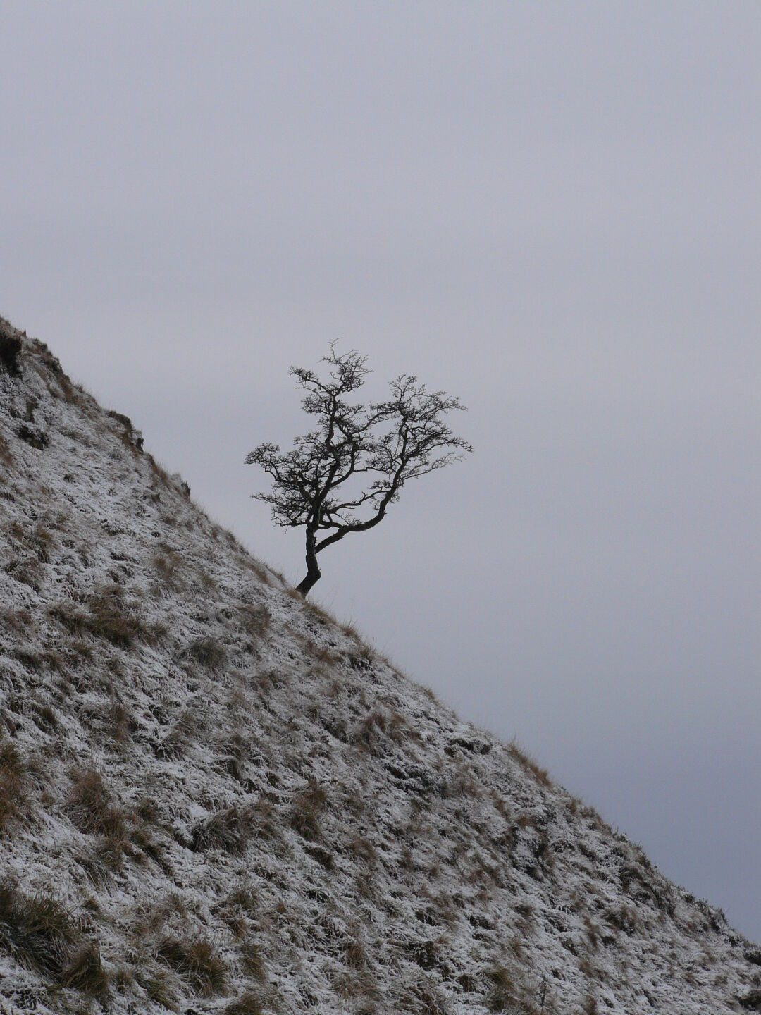 Winter at the Hadrians' Wall.