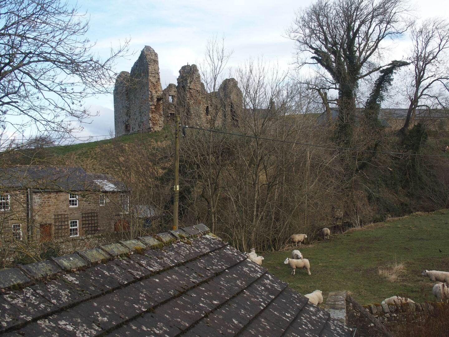 Our room in Holmhead guest house, and the view from the lounge: Thirlwall castle and sheep.