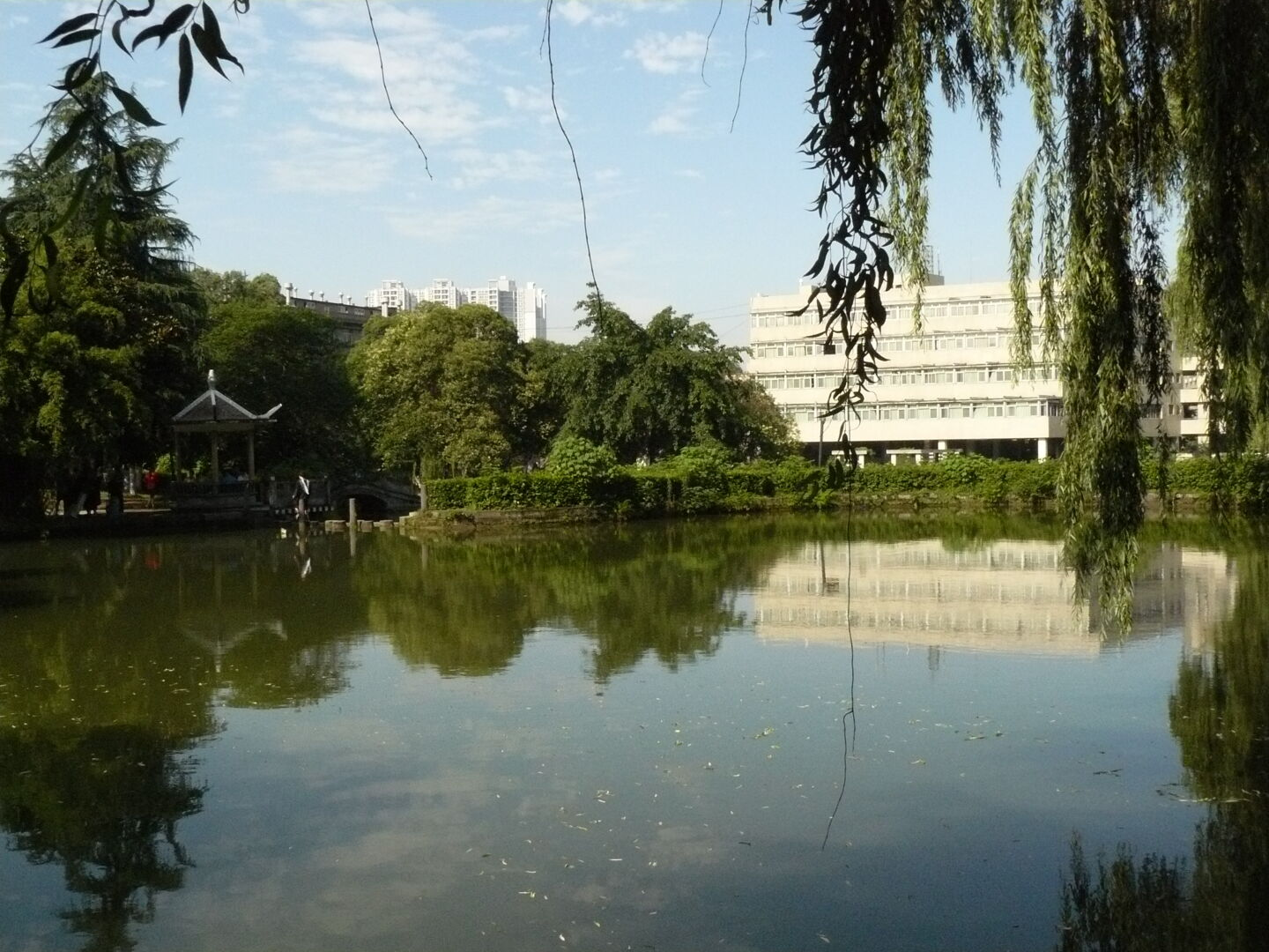 In the middle of the old campus, there is this artificial lake.